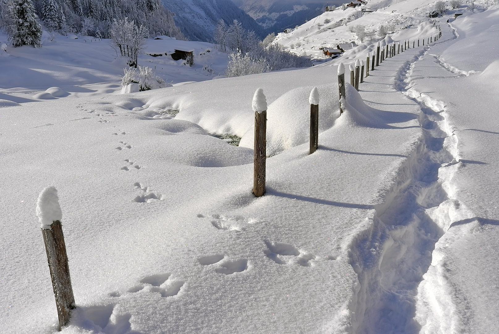 Schneespuren in Golzern