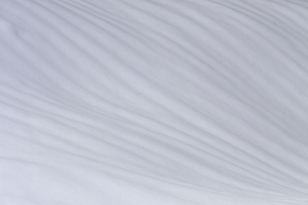 Schneestudie I