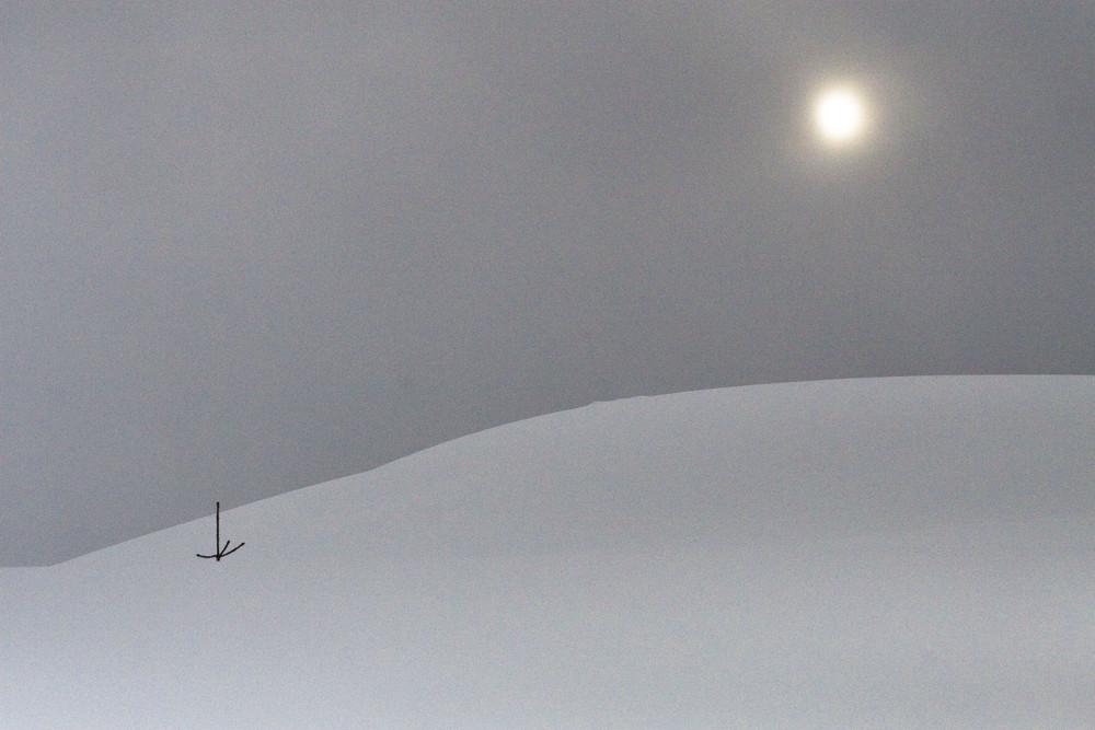 Schneestudie IV