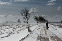 Schneesturm in NF