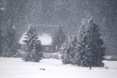 Schneetreiben in der Einsamkeit