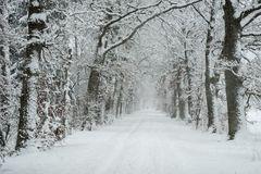 Schneetunnel
