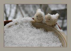 Schneevögel