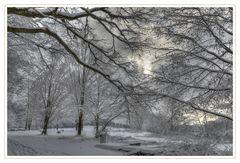 Schneewaldrand