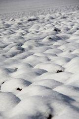 Schneewellen