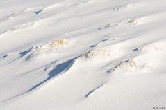 Schneewünsche ...
