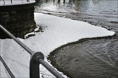 Schneezunge