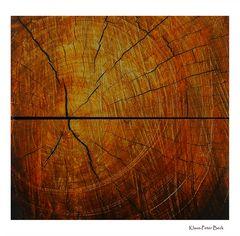 Schnitt durch einen Holzblock