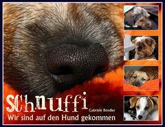 Schnuffi.......