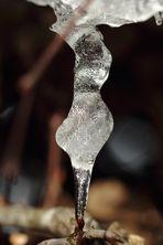 Schöhnheit aus der Eiszeit 2