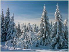 Schön... - aber selten... (1. der Serie: Früher gab´s Winter...)