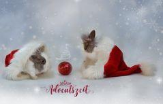 schöne Adventszeit ..
