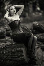 Schöne auf Holz