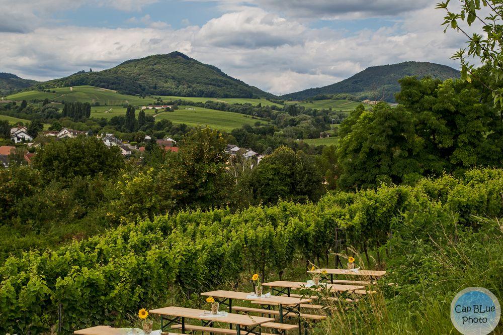 Schöne Aussicht vom Kalmitfest in Ilbesheim
