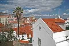 Schöne Dächer Lissabons bis zum Pantheon National