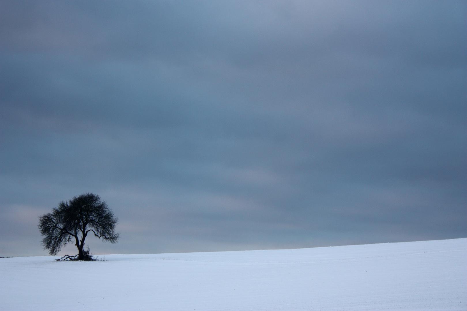 Schöne Einsamkeit