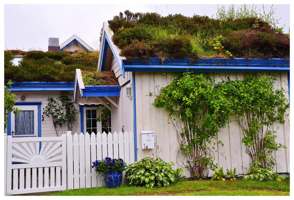 Schöne Grüße aus Norwegen
