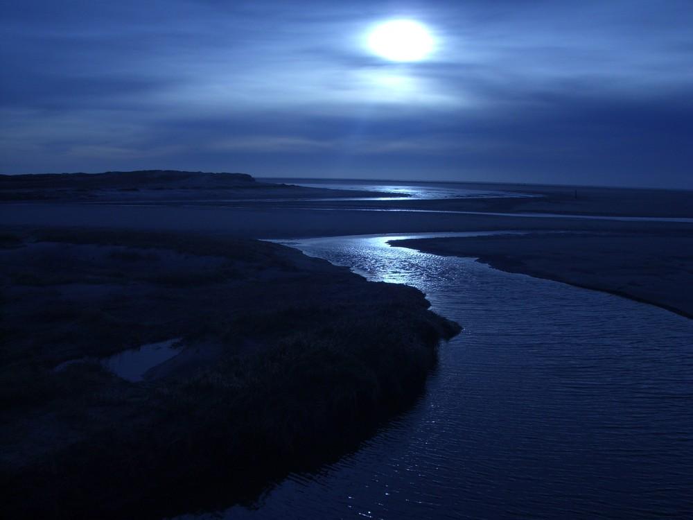 Schöne Nordsee, willkommen in St. Peter Ording!