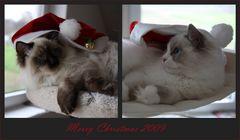 Schöne Weihnachten 2009
