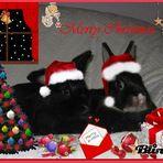 schöne weihnachten!