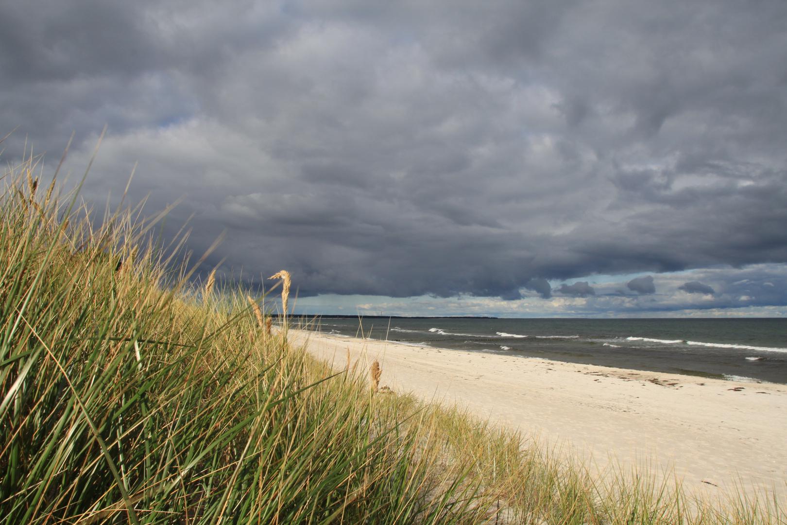 schöne wilde Ostsee