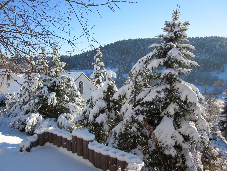 Schöne winterbild