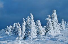 Schöne-Winterlandschaft