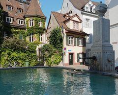 Schöneck-Brunnen