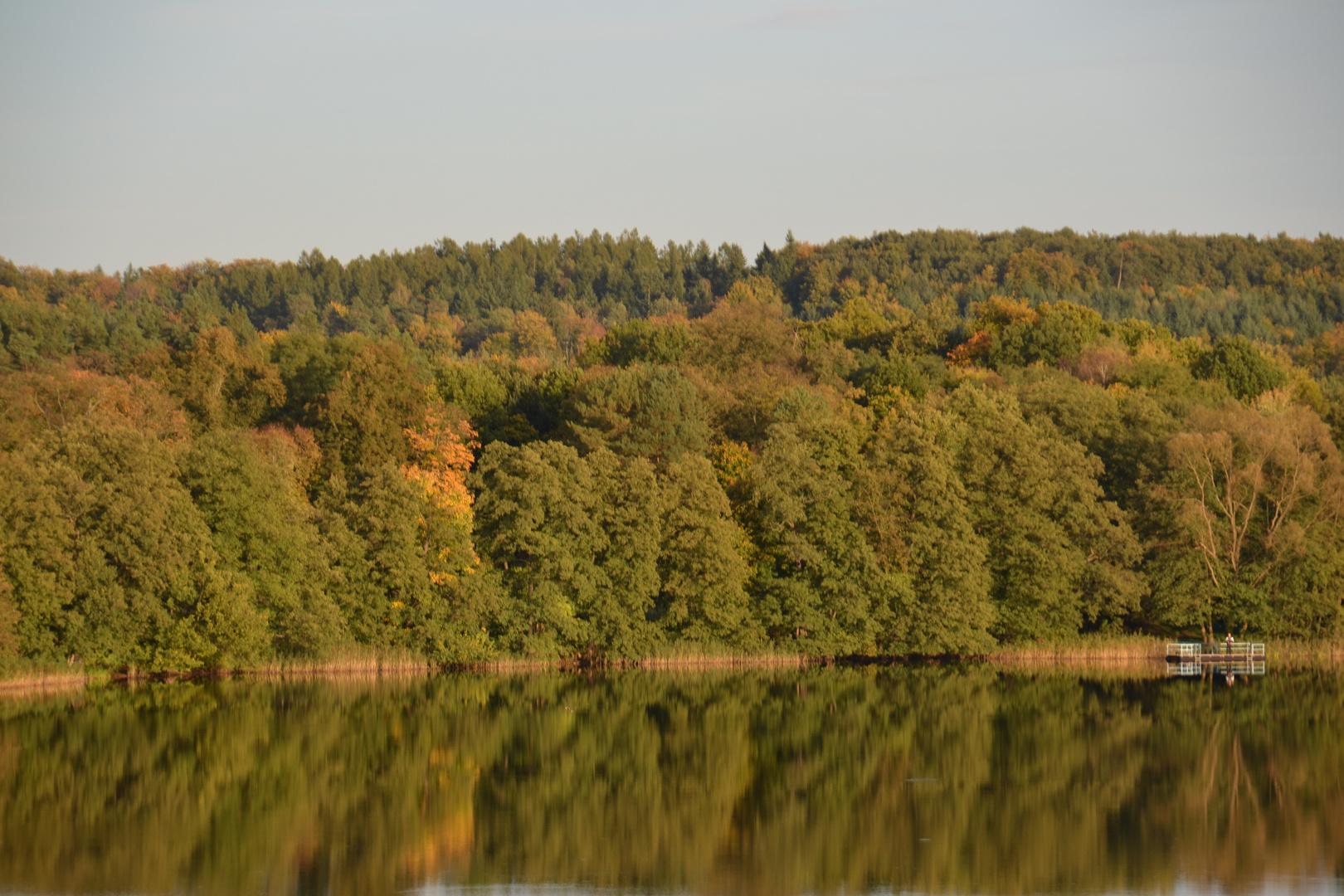 Schöner Herbst!