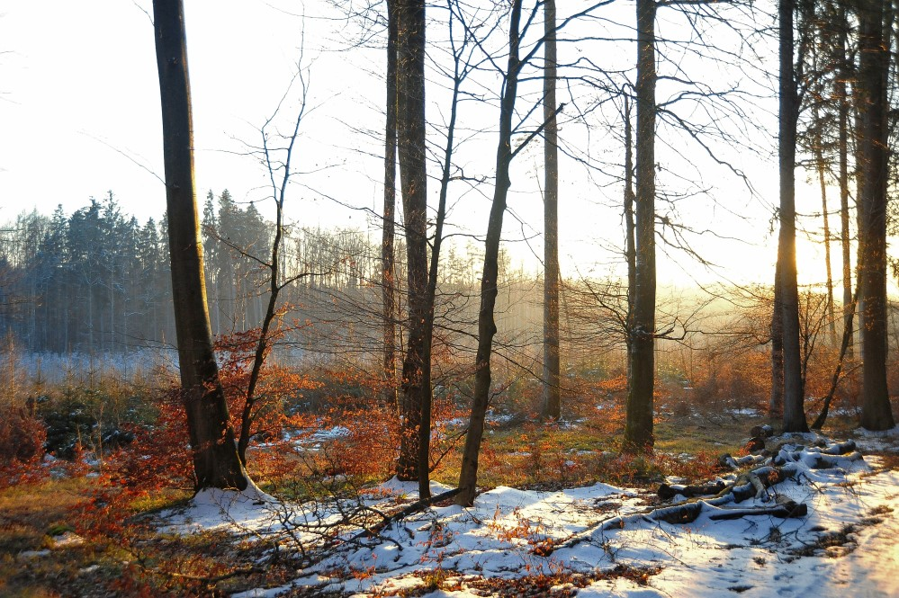 Schöner Sonnenuntergang im Schnee