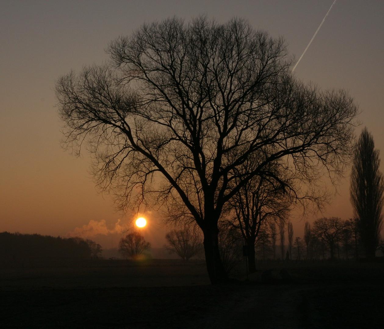 Schöner Wintermorgen, gestern