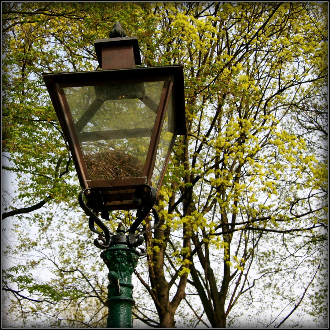 schöner wohnen... Foto & Bild   lampen und leuchten, alltagsdesign ...