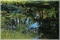 Schönes vom Mondo Verde Park
