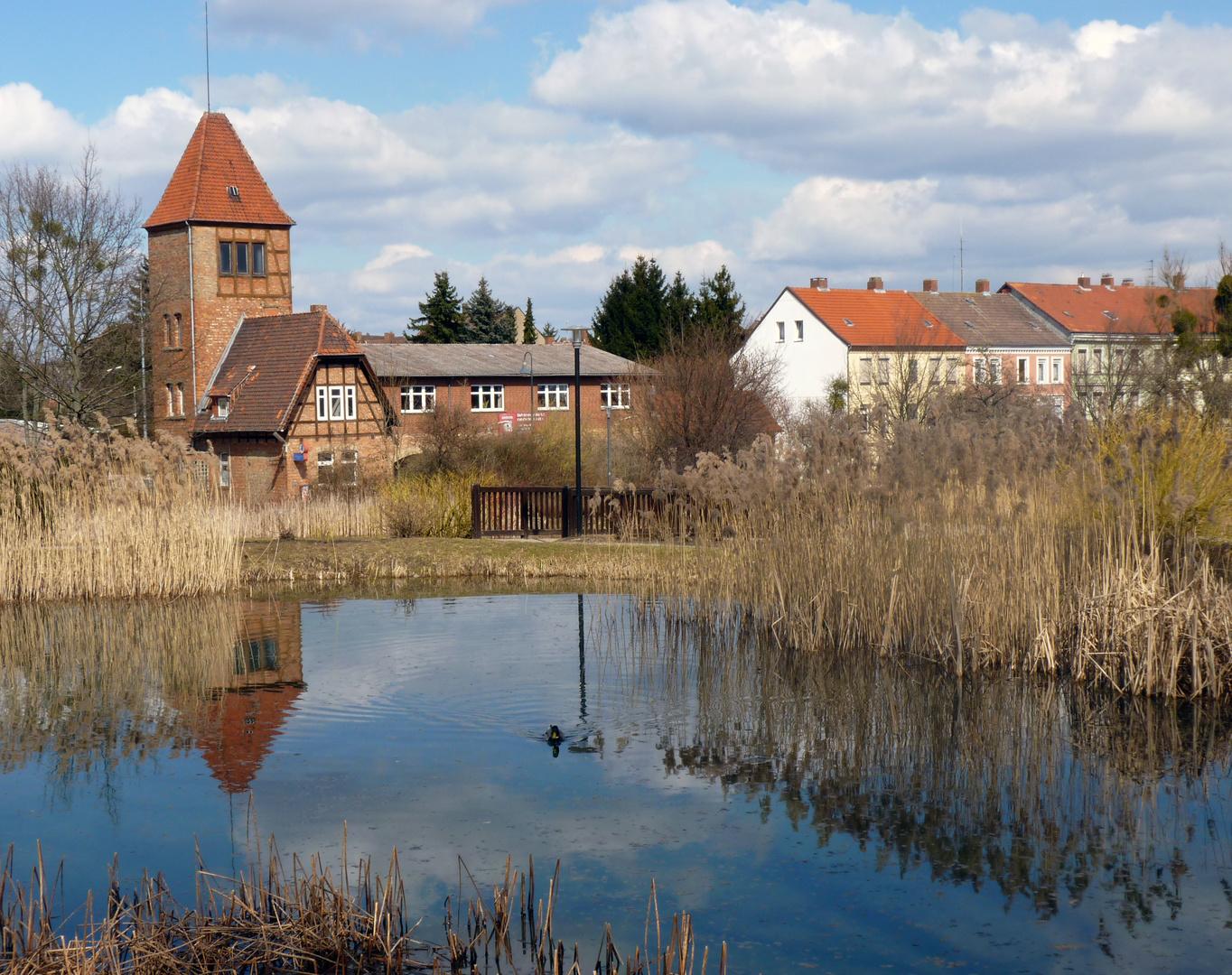 Schöninger Bürgermeisterwiese