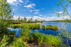 Schönramer Heidesee