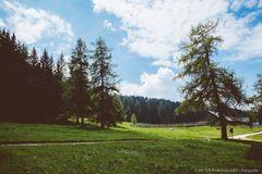 Schönrast Alm (Südtirol) #3