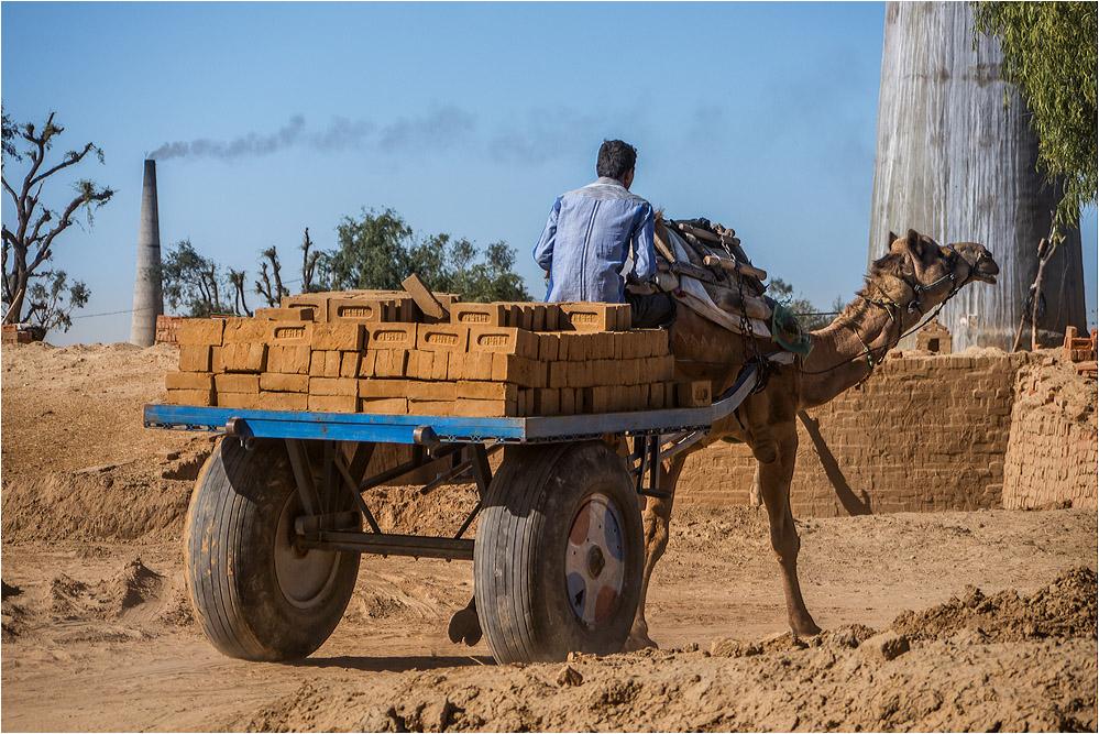 Schonender Transport...