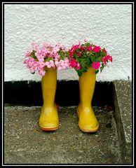 Schottische-Blumen-Stiefel