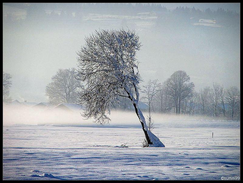 schräge Landschaft im Winter..:)