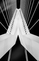 Schrägseilbrücke in Detail