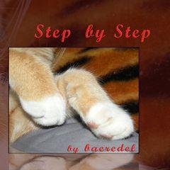Schritt für Schritt <> Step by Step >