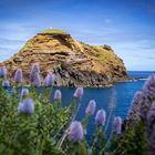 Schroffe Nordküste Madeiras