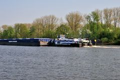 Schubverband auf der Elbe