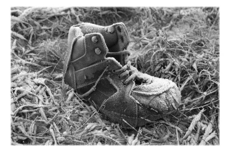 Schuh im Schnee SW