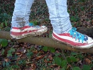 Schuh'bild .