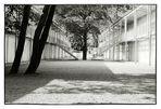 »Schule im Park«