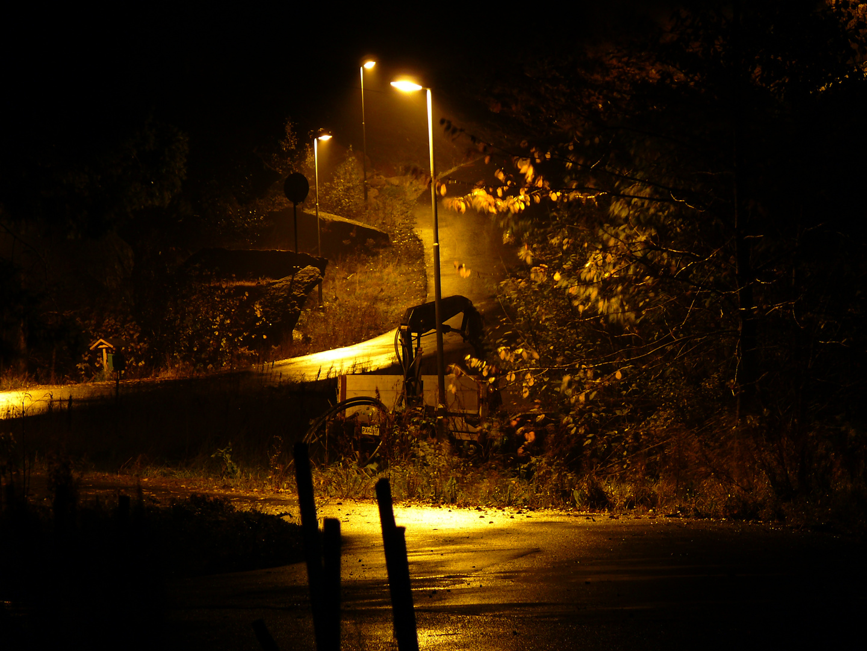 Schummrige, feuchte Herbststimmung