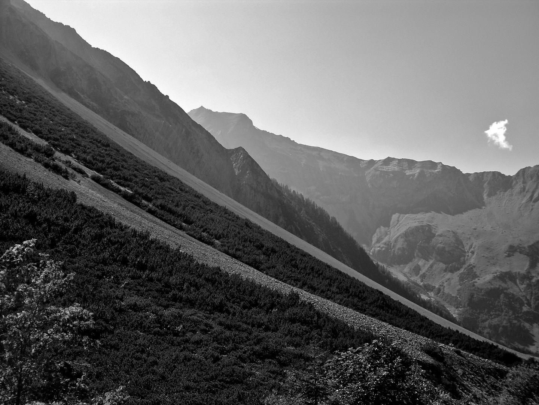 Schuttkegel unterhalb der fast 3000 Meter hohen Scesaplana im Brandnertal, Vorarlberg/Österreich...