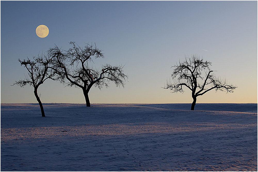 .... Schwäbische Alb / Der Mond im Januar