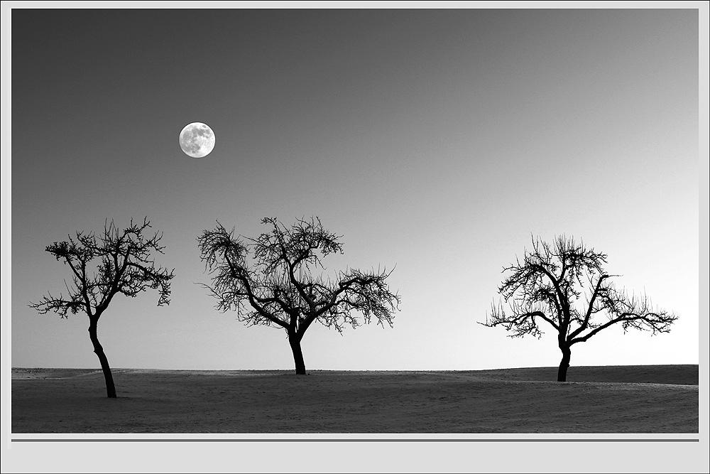 .... Schwäbische Alb / Der Mond in S/W ....